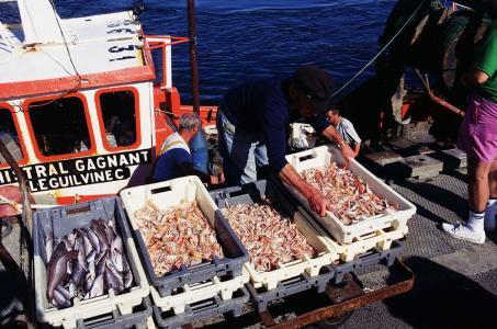 Proximité des ports de pêche